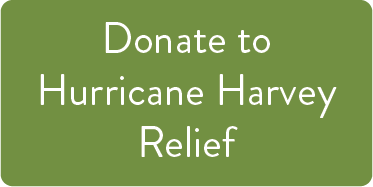 Donate to Harvey HELP